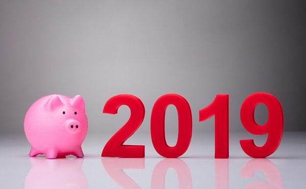 2019: характеристики года Желтой свиньи