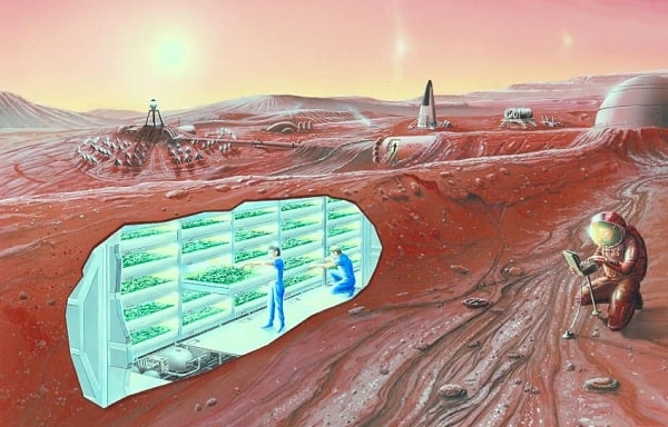 Радиация на Марсе угрожает мозгу будущих колонистов