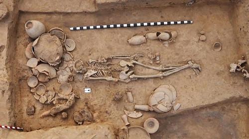 Результаты крупнейшего исследования древней ДНК