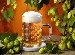 10 интересных, но неизвестных фактов в пиве