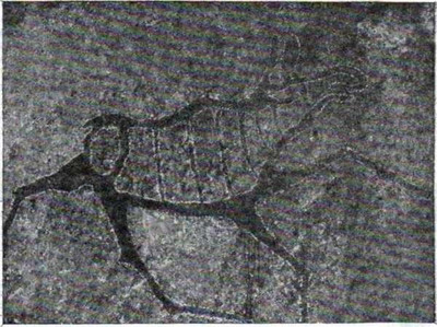 Алтай: тайны и загадки Колыбели мира