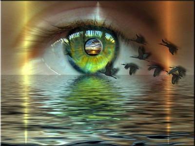 Мир глазами умирающих