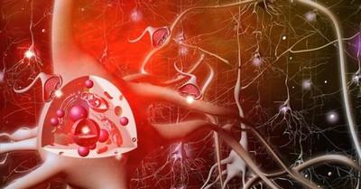 Нейромедиаторы: их работа и важность удовольствия