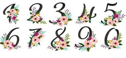 Какая ваша любимая цифра?