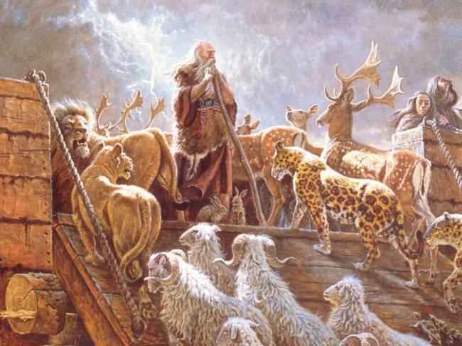 Ноев было несколько сотен
