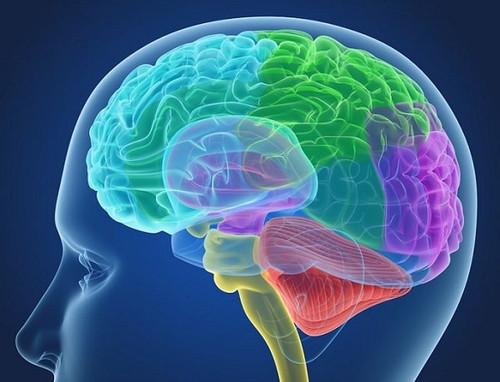 20 фактов о психологическом восприятии мира