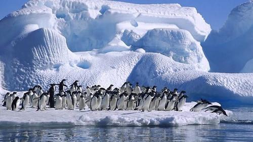 Антарктида: тайны загадочного континента