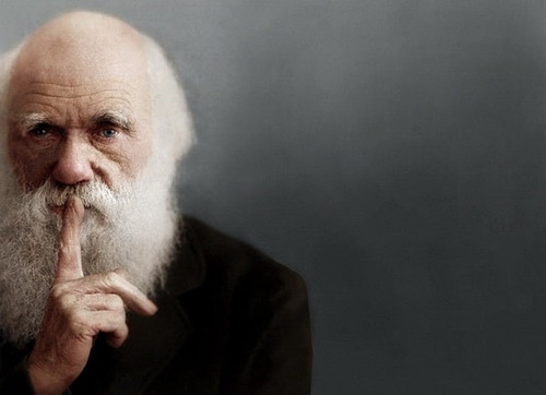 Секта Дарвина: теология и методология