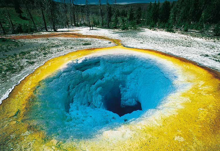 Morning glory pool of yellowstone national park