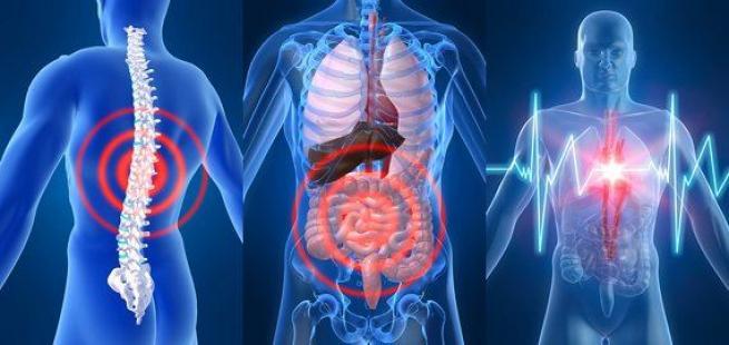 Как организм сигнализирует о болезнях